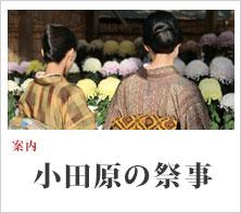 案内:小田原の祭事